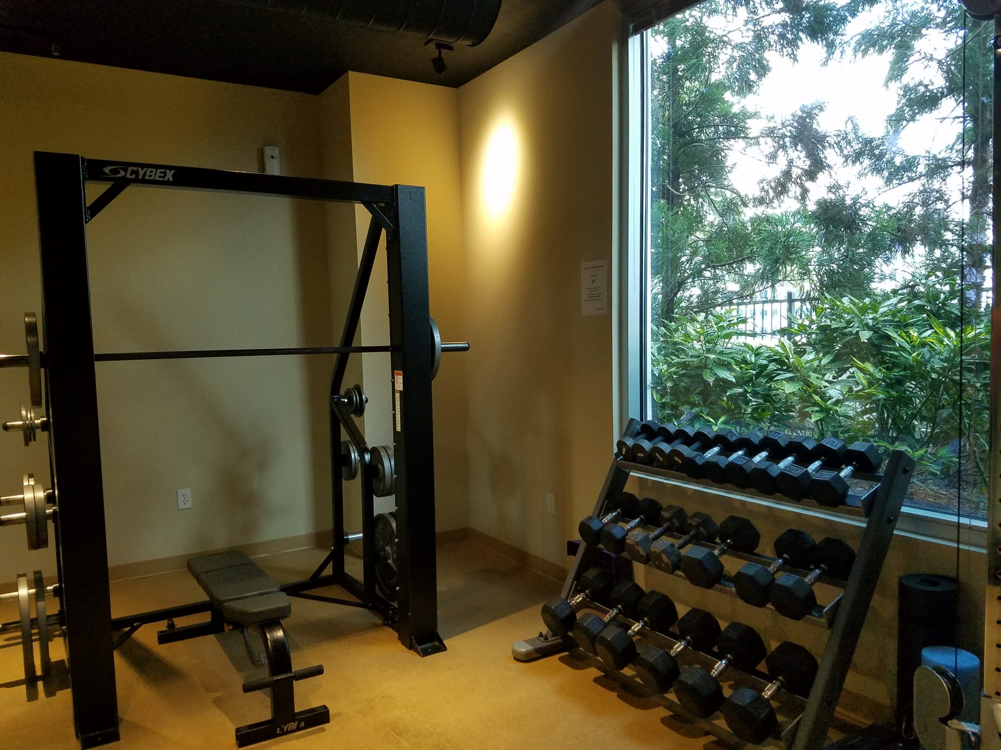 The Realm in Buckhead Fitness Weight room and dumbbells