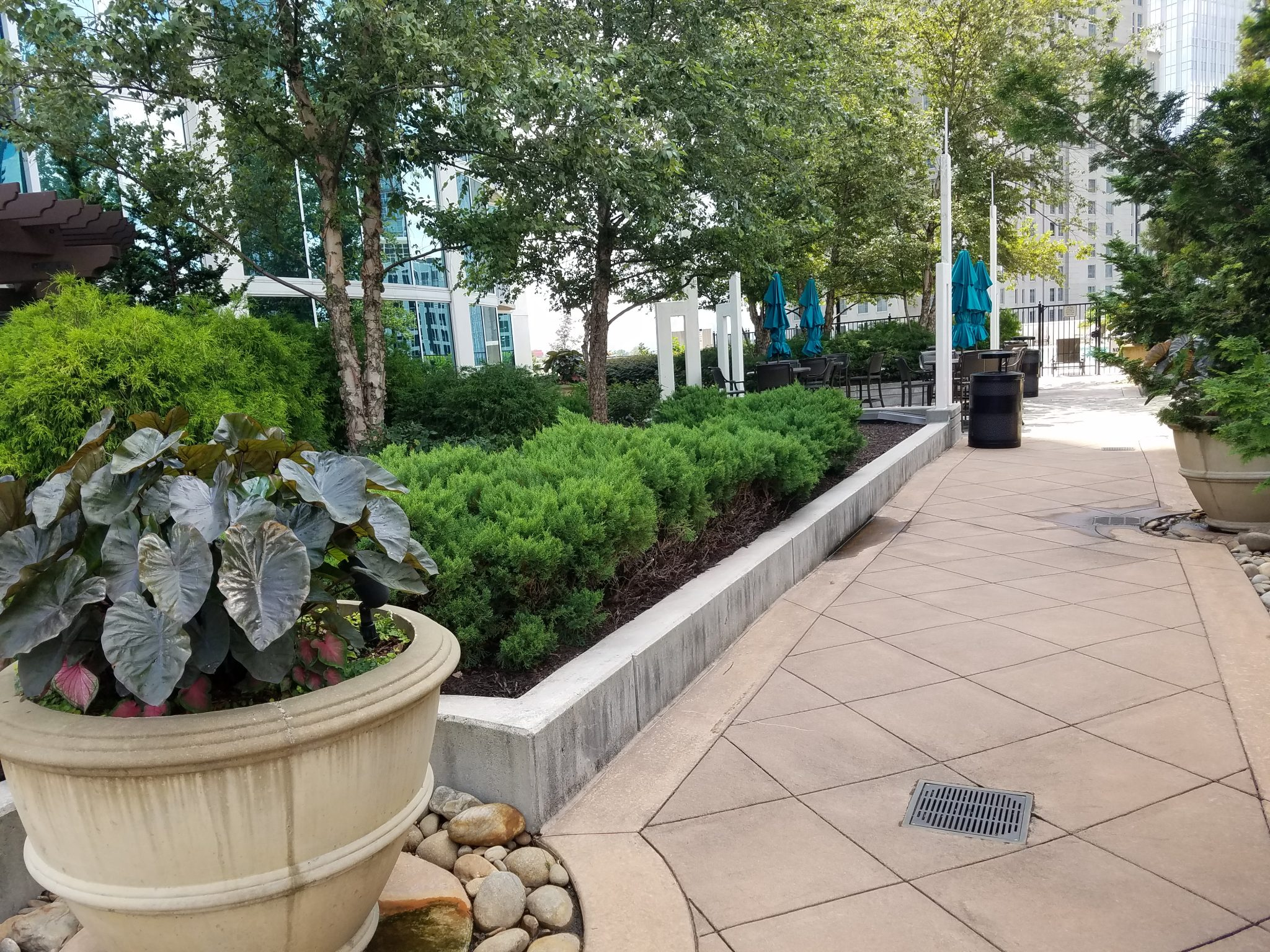 The Realm in Buckhead walkway in Common Area outside with large planter